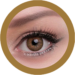 celestial 321 brown II contact lenses colored lenses, dolly eyes, korean lenses, natural colour lenses by eos
