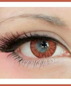rose macaron contact lenses