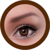 freshtone blends chocolate brown cosmetic colored contact lenses, natural lenses,
