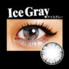 ice II gray by EOS circle lenses colored contact lenses dolly eyes big eyes kawaii eyes lolita