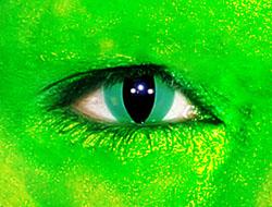 halloween crazy cat contact lenses colored lenses costume lenses circle lenses reptile