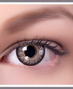 new bio slim series gray lenses