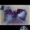 bat large hair clip in various colors handmade pastel goth fairy kei