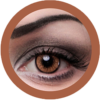 EOS New Adult 203 brown contact lenses, circle lenses,dolly eyes,cosplay, theatrical lenses, kawaii